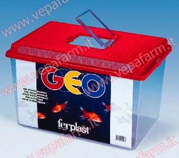 FER-060023099
