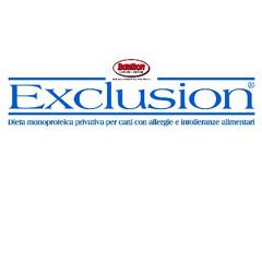 Dorado Srl Exclusion